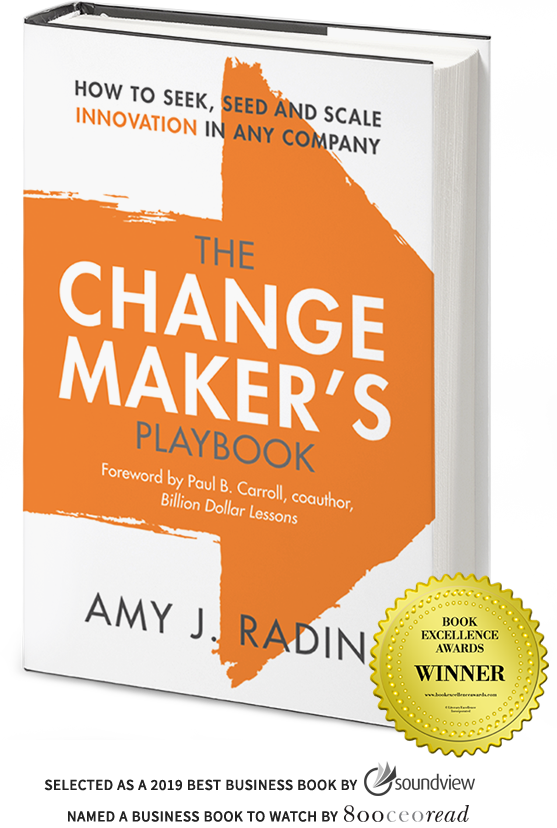 The Change Maker's Playbook by Amy Radin